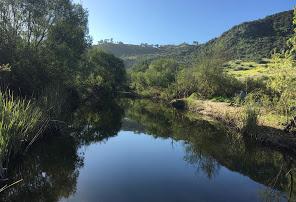 aliso viejo creek trail